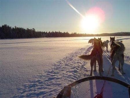 Les vêtements adaptés pour effectuer un voyage en Laponie