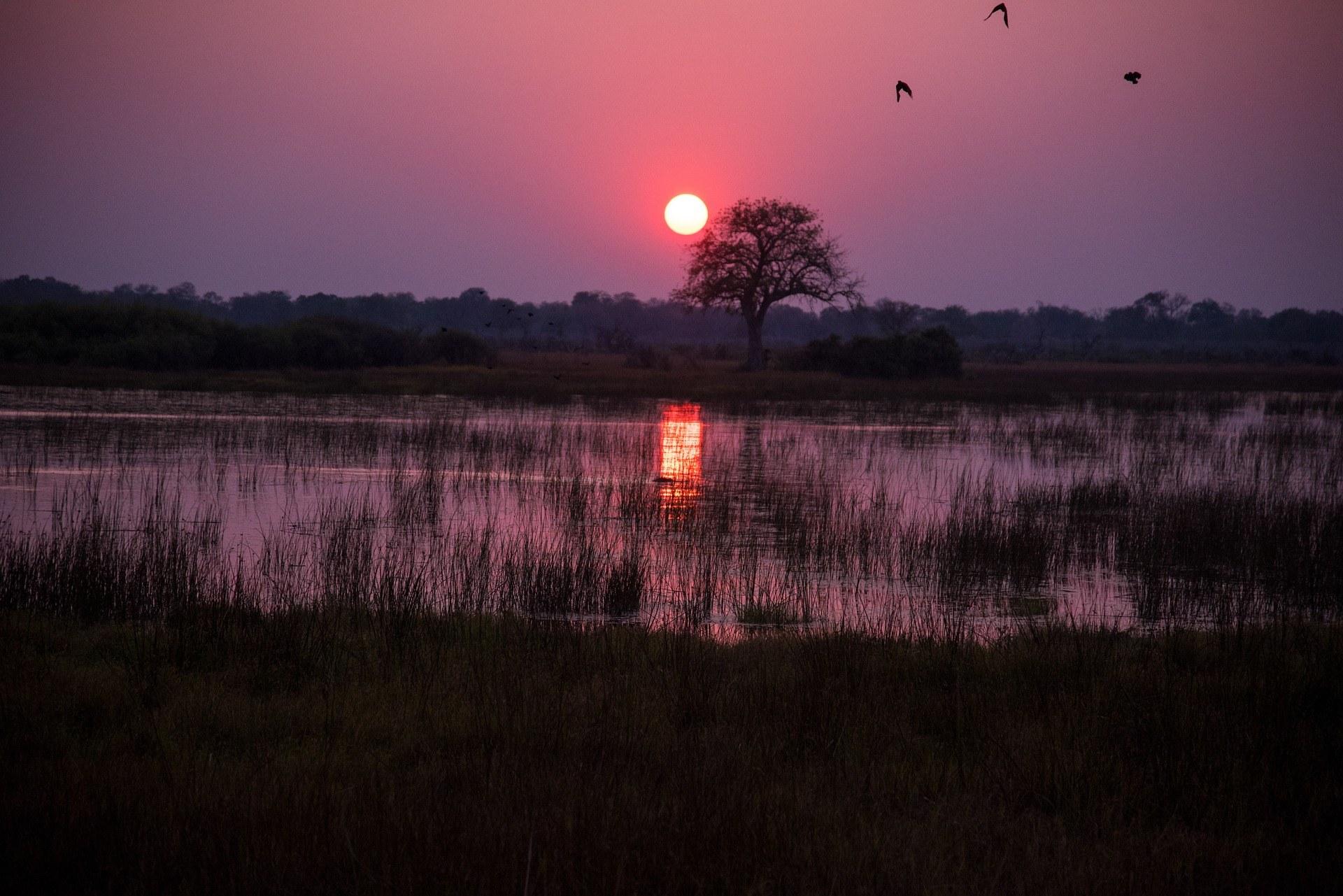 vêtements de voyage adaptés au Botswana
