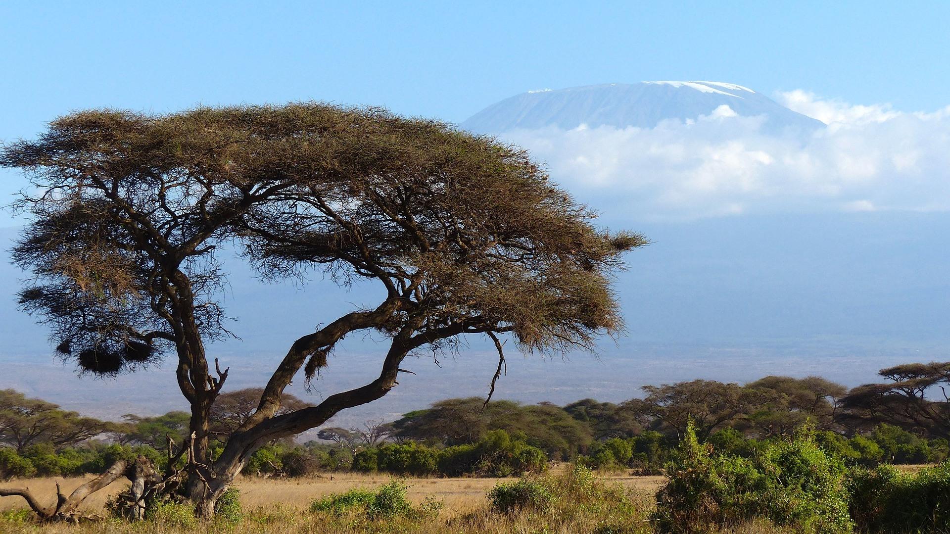 Quels vêtements pour gravir le Kilimandjaro ?