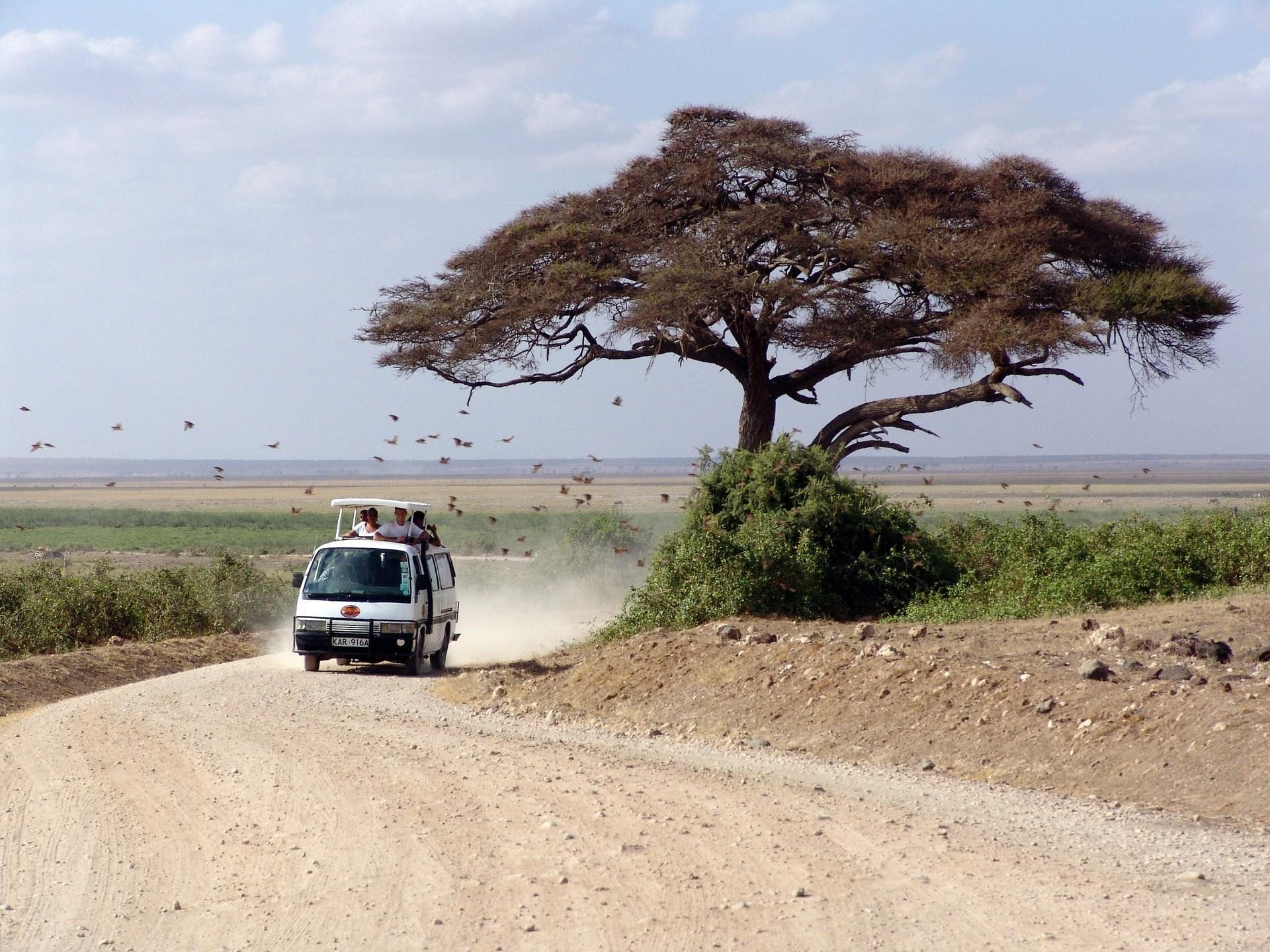 Kenya : notre sélection de vêtements adaptés au climat